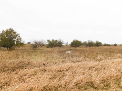 land offered in multiple tracts property bluff city kansas
