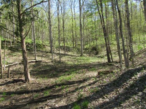 house & rock springs plantation farm with land property monterey tennessee
