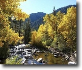 California Hunting Land 40 Acres 40/80ac CaliforniaMiningClaimRiver $500/mo