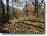 81 acres Hunting Mount Vision NY Texas Rd