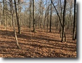21 acres in Pleasant Valley NY Rossway Rd