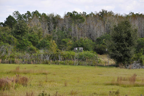 house & lane ranch property polk city florida