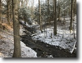 81 acres Timber Camden NY 11078 Westdale