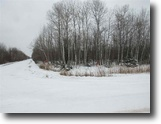 305 +/- Acres Rec Land in the U.P. 1118889
