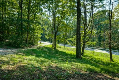 land home work shop pond open pasture property oakdale tennessee