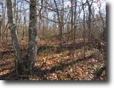 Tennessee Land 1 Acres 0.94Ac In Cumberland Cove, Tn For $6900