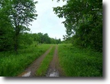 Michigan Land 1 Acres Trophy White Tail 1119136
