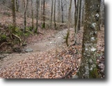 Tennessee Land 73 Acres 72+ac, 1200+Elevation,Creek,Rock Formation