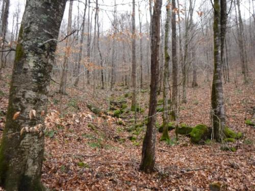land elevation creek rock formation property jamestown tennessee