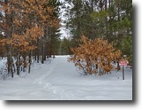 Wisconsin Land 13 Acres Town of Minong, WI