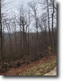 Kentucky Hunting Land 200 Acres Hunters: 200+/-ac Wolfe Co. KY $149,900