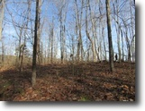 Tennessee Hunting Land 43 Acres 42.84 Ac / At Dead End Of Rd / Mtn Views
