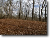 Tennessee Hunting Land 10 Acres 10 Ac Joins Usa Corp On Dale Hollow Lake