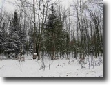 Recreational Wooded 46 +/- Acres 1119516