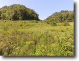 Tennessee Hunting Land 73 Acres 72.68 ac, Pasture, Wooded, Creek Springs