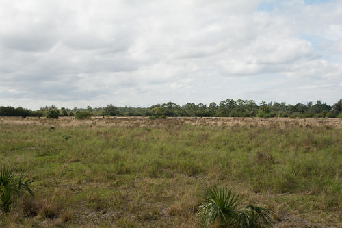 house & th ave land farm property vero beach florida