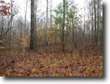 Tennessee Land 5 Acres 5.02 Ac, Wooded, Utilities Avail, Rural