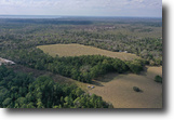 Florida Land 40 Acres Catfish Creek Recreational Tract