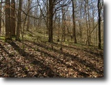 Tennessee Land 25 Acres 25ac In Hendersonville, Tn–Prime Propery