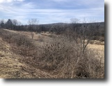 4 acres Creek in Angelica NY County Rd 15