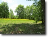 Tennessee Land 5 Acres 5+ac w/A Lovely Building Site w/Mtn Views