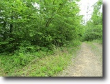 Tennessee Farm Land 8 Acres 8+Ac / No Restric / Wooded / Usa Corp Ft