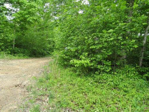 house & land no restric wooded usa corp property celina tennessee