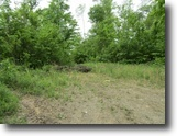 Tennessee Land 28 Acres 28+Ac / No Restric / Wooded