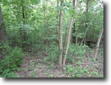 Tennessee Land 9 Acres 9.43Ac / No Restric / Wooded