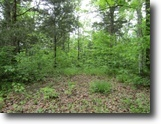 Tennessee Land 8 Acres 8+Ac / No Restric / Wooded / Usa Corp Ft