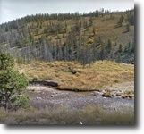 Colorado Hunting Land 80 Acres 80 ac Colorado Finance MiningClaim w/Creek