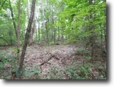 Tennessee Land 8 Acres 7+ Ac Country Setting, Near Dale Hollow