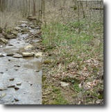 Tennessee Land 5 Acres 5+ Ac Creek, Wooded, Near Dale Hollow