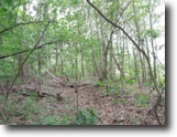 Tennessee Land 8 Acres 7.92Ac Creek, Wooded, Near Dale Hollow