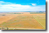 80± Acres Cropland