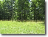 Tennessee Land 10 Acres 10+ ac located in a rural private location