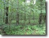 Tennessee Land 10 Acres 1+ Ac Wooded, Level, No Restric, Waterfall