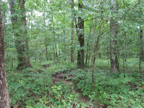 land wooded level no restric waterfall property crossville tennessee