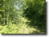 Michigan Land 82 Acres 82 +/- Wooded Recreational 1121736