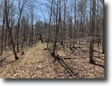 152 acres Hunt Pittstown NY Tory Hill Road