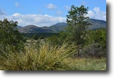 20 acres New Mexico land in the mountains