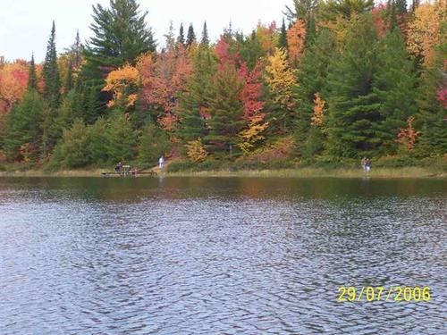 fawn lake beauty property shingleton michigan