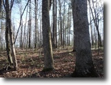 Tennessee Land 2 Acres 1.56ac In The Historical Town Of Rugby, Tn