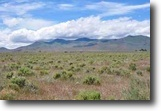 Nevada Farm Land 10 Acres Land for Sale in Paradise Valley