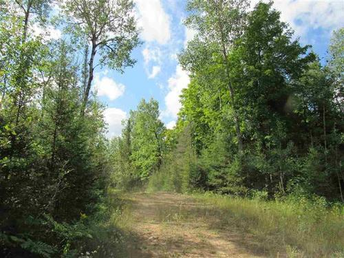 hunt fish private lake land property hermansville michigan