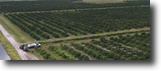 Florida Farm Land 1 Acres Indian River West-South-Florida Ag Portfol