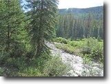 Colorado Hunting Land 80 Acres 80 ac Finance Colorado MiningClaim w/River