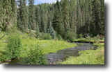 Colorado Hunting Land 40 Acres 40 ac Colorado MiningClaim w/Creek Finance
