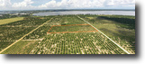 Florida Farm Land 10 Acres Ponds Road Grove
