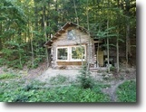 New York Land 10 Acres Rustic Log Cabin Dryden NY 188 Beam Hill